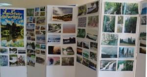 В помещении Совета ветеранов Балаковской АЭС прошла выставка фотографий «В объятиях природы», посвященная Году экологии в России